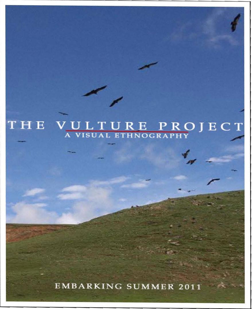 Intermedia Workshop: The Vulture Project...
