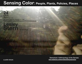 Lesley Stern: Sensing Color