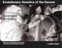 Brenda Bradley: Evolutionary Genetics of the Senses