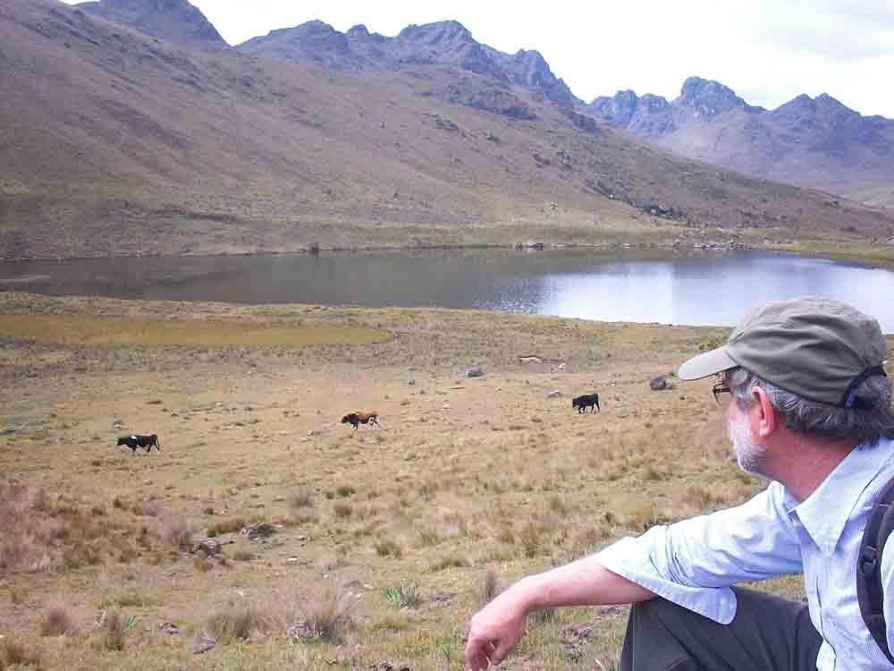 High Andean landscape in northern Peru