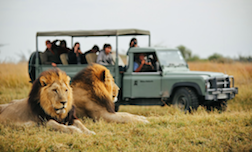 Study Abroad Program in Botswana Summer 2015