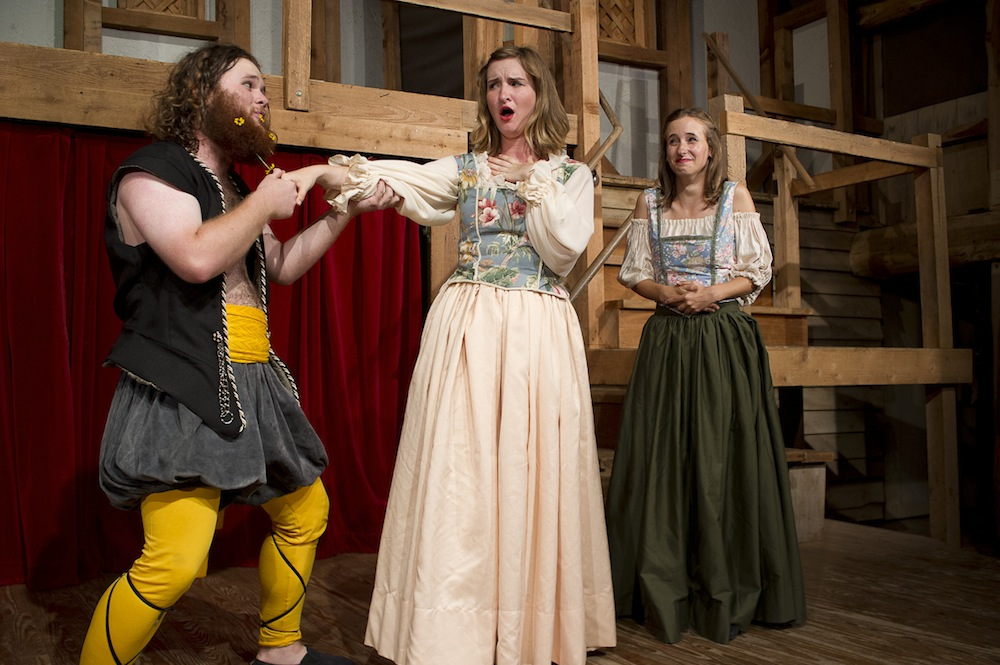 Shakespeare at Winedale presents Twelfth Night in Dallas!