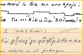 Grant Will Fund Transcription of Indigenous Language Collection