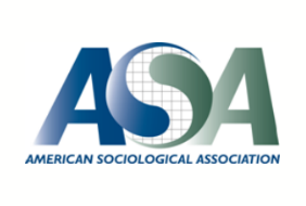 American Sociological Association.