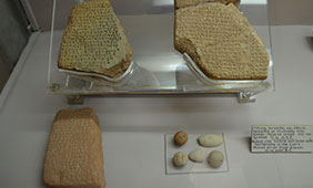 Cypro-Minoan inscriptions on display at the Cyprus Museum, Nicosia, Cyrpus. Photo by Cassandra Donnelly