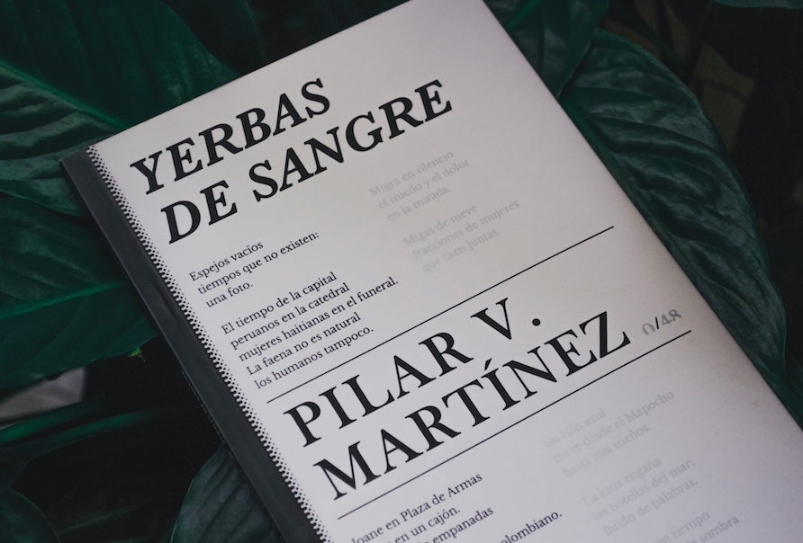 New Publication From Pilar Villanueva Martínez