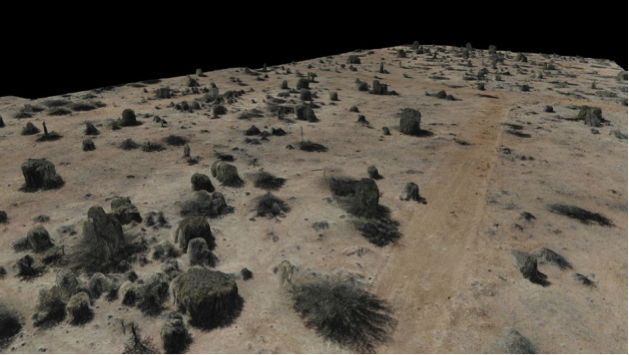 A 3-D model rendered of vegetation obtained from the drone